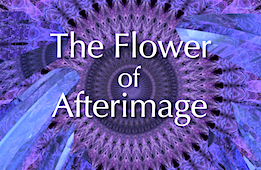 The Flower of Afterimage & Other Immersive Art